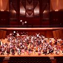 Vinculum Philharmonic Orchestra