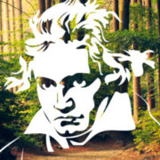 Profile picture of Jenaer Philharmonie