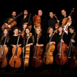 Profile picture of Die 12 Hellweger Cellisten