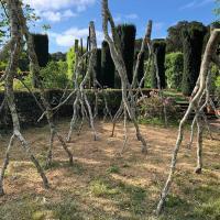 FiloliUpsideDownTrees
